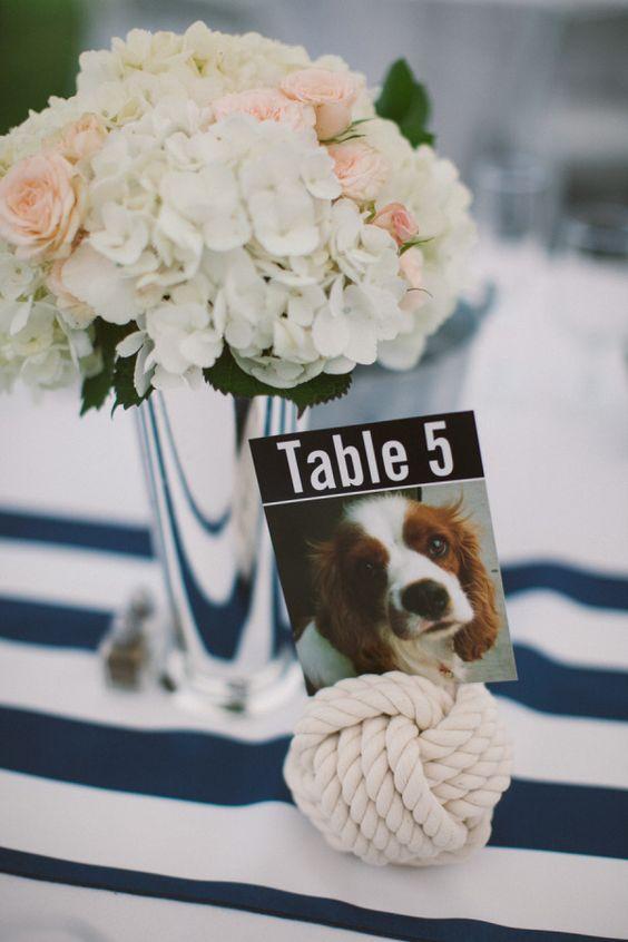 dogs in wedding blog 8.jpg