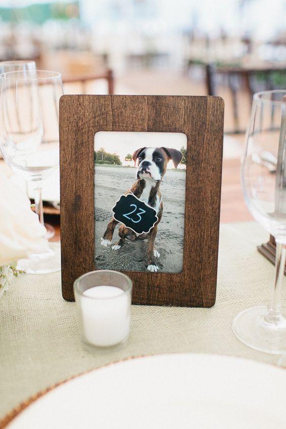 dog table number 2.jpg
