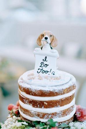 dogs in wedding blog 10.jpg