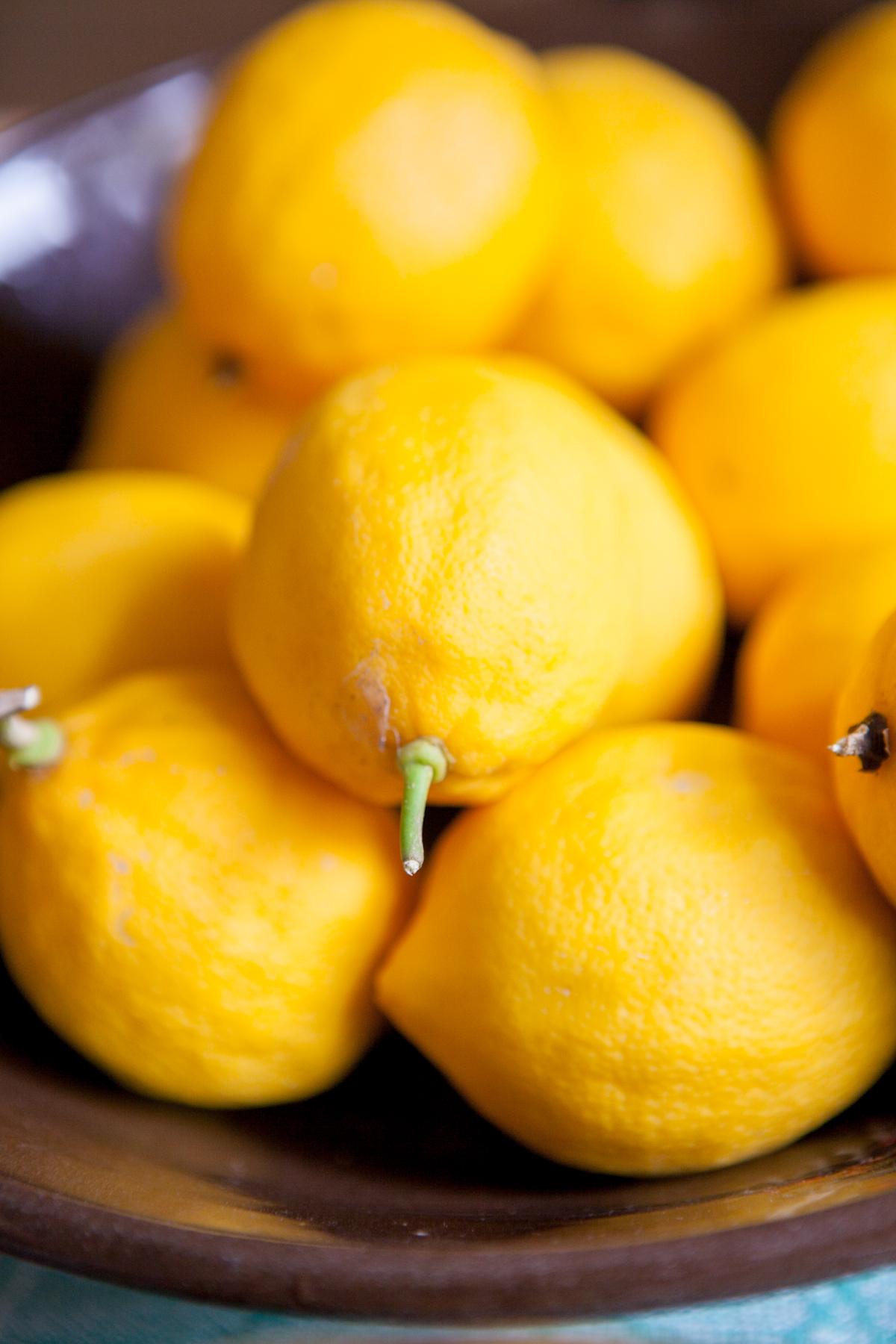 kbrodgesell_lemonade_MG_4837.jpg