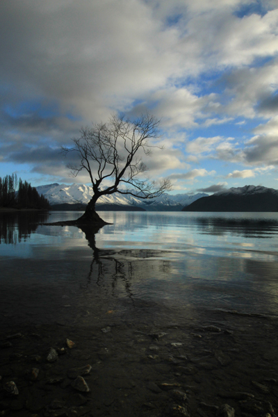 Early Morning at Lake Wanaka