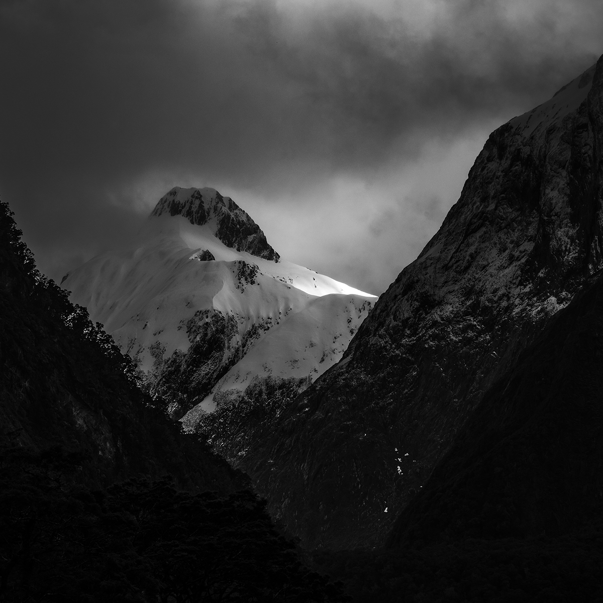 Milford Track