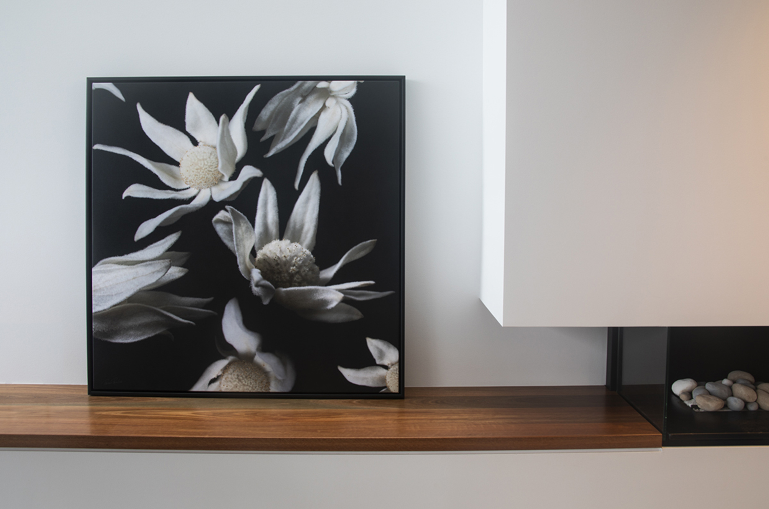 Flannel Flowers with 3 inch Deep Floating Box Frame