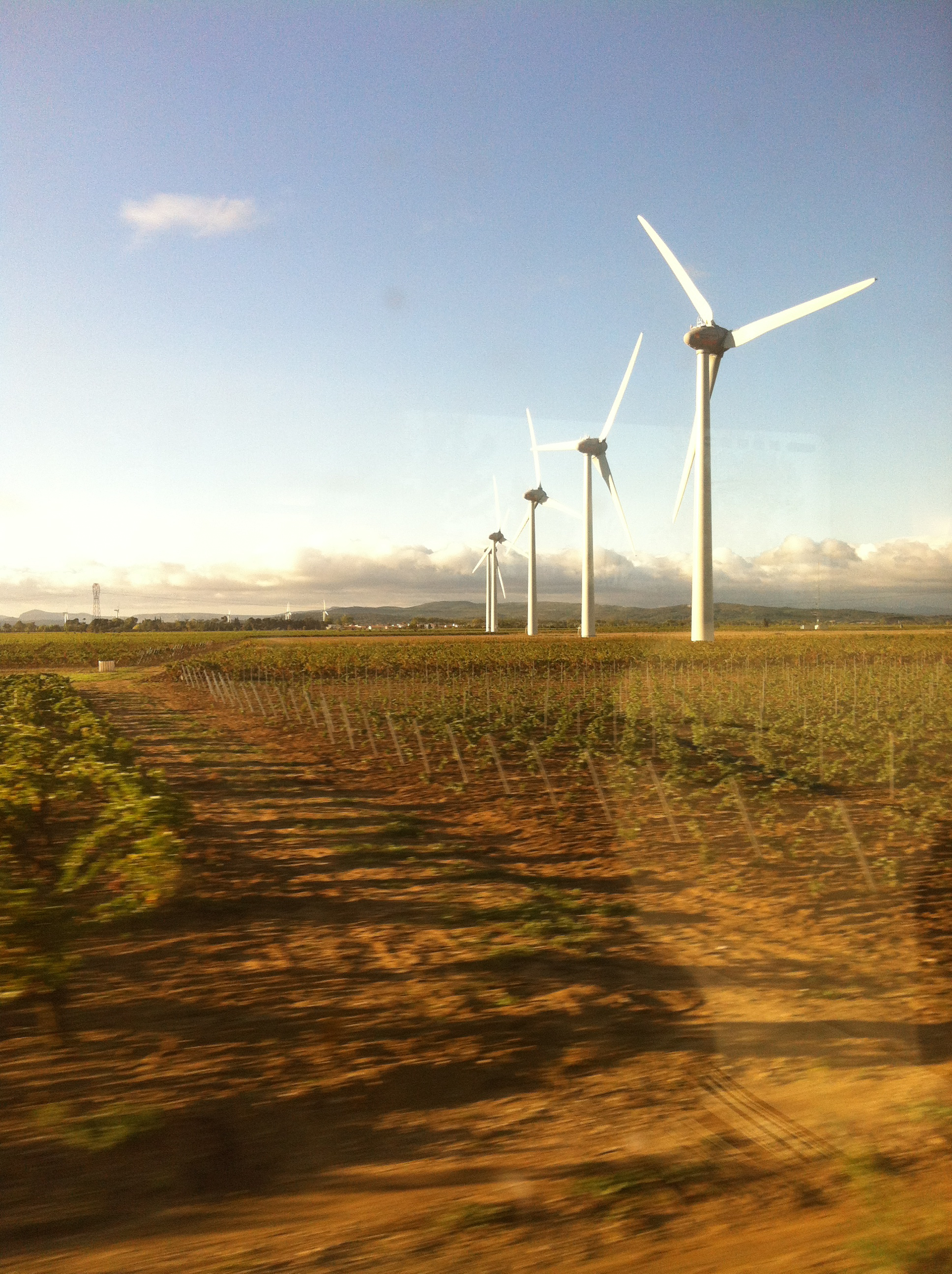 Wind turbines in a vineyard in southern France