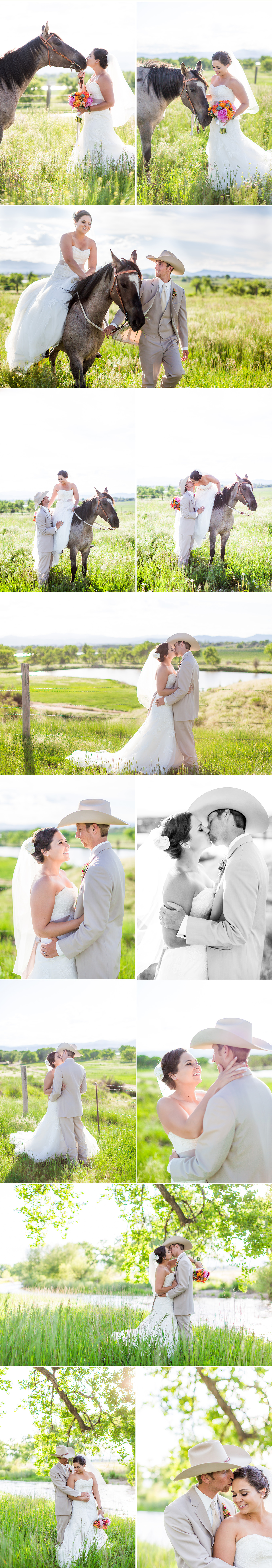 7_bride with horse photography.jpg