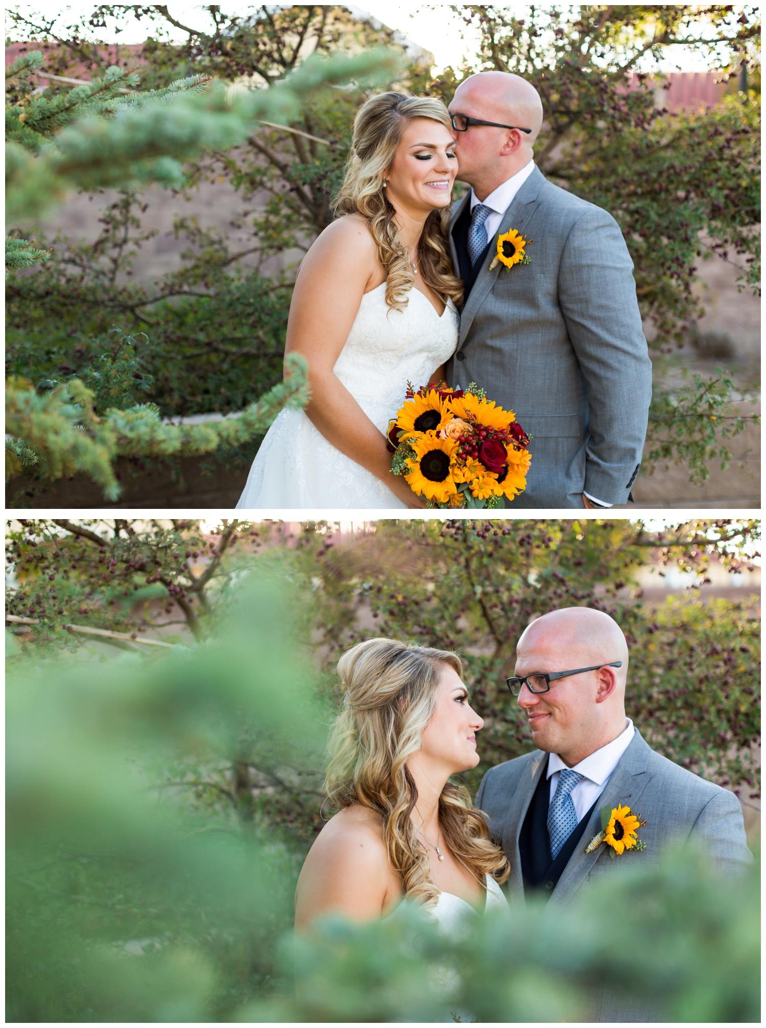 fountains of loveland wedding photography14.jpg