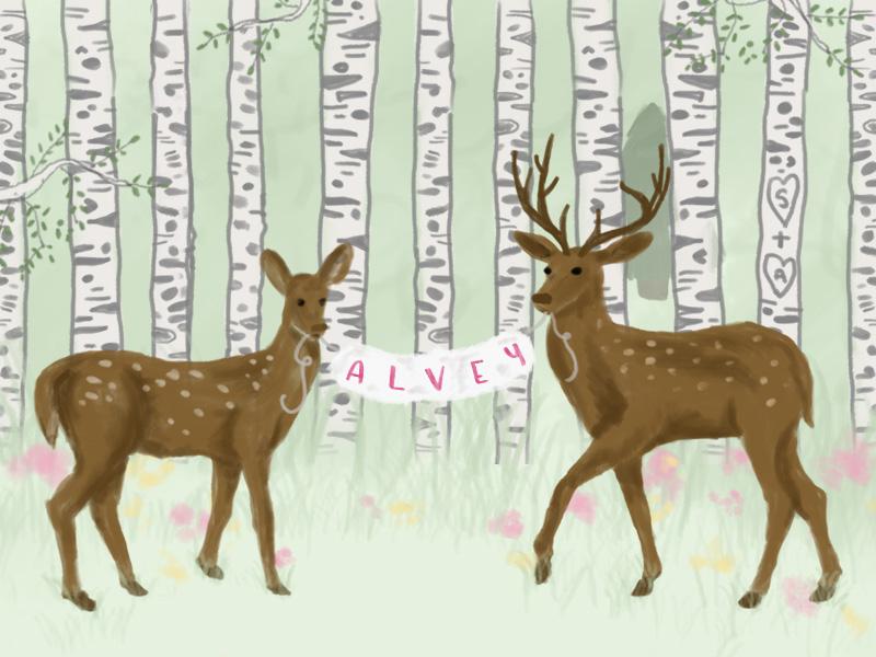 Deer-Shower.jpg