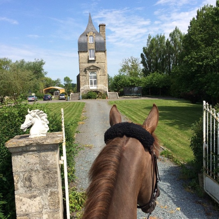 Taking a little break after the Auvers Jump show with 🔷 @florebdn 🔷/ Baudonnel Flore. And thank you too, to @appawoosa For pointing me to this great photo, I always appreciate a good photo lead! ........... Tag your photo #lifebeetwentheears For a chance to be featured. Ride On! ^^ .......... #betweentheears #equestrianphotography #equestriantravel #auvers #lamarche #auversjump #thankyou #baudonnelflore