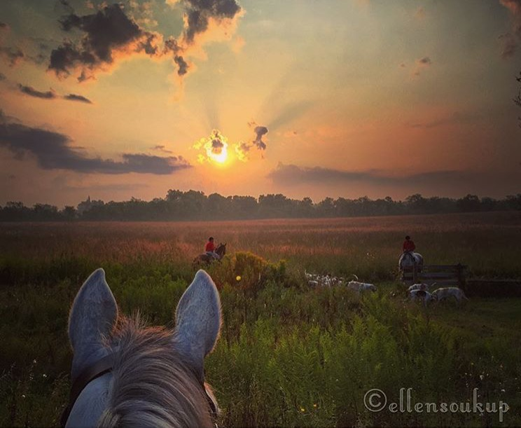 Early morning drag hunt ( scent only, no animals harmed ) through the beautiful lens of 🔷 @ellengail22 🔷 in Wayne, Illinois. ....... Tag your photo #lifebetweentheears for a chance to be featured. Ride On! ^^ ........ #betweentheears #sunrise #draghunt #scentonly #equinephotography #equestriantravel #wayne #illinois #thankyou #ellengailsoukup