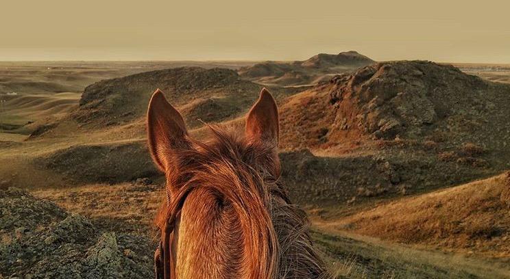 cowgirlramblings.jpg