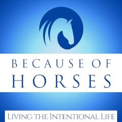 because-of-horses.jpg