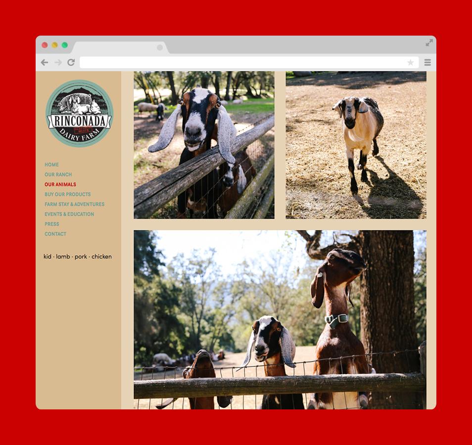 Copy of Rinconada-Dairy