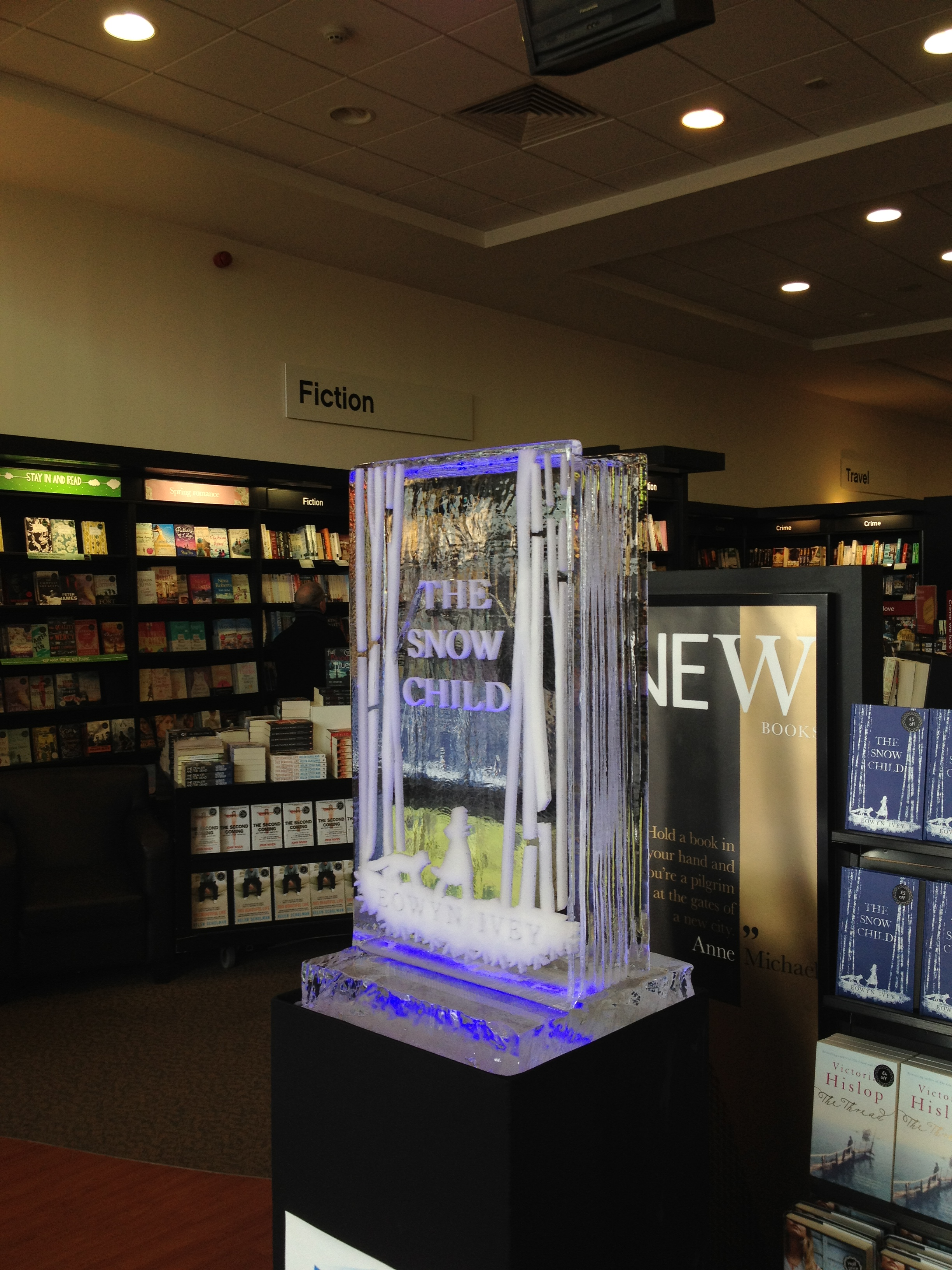 Ice Book - Book Launch
