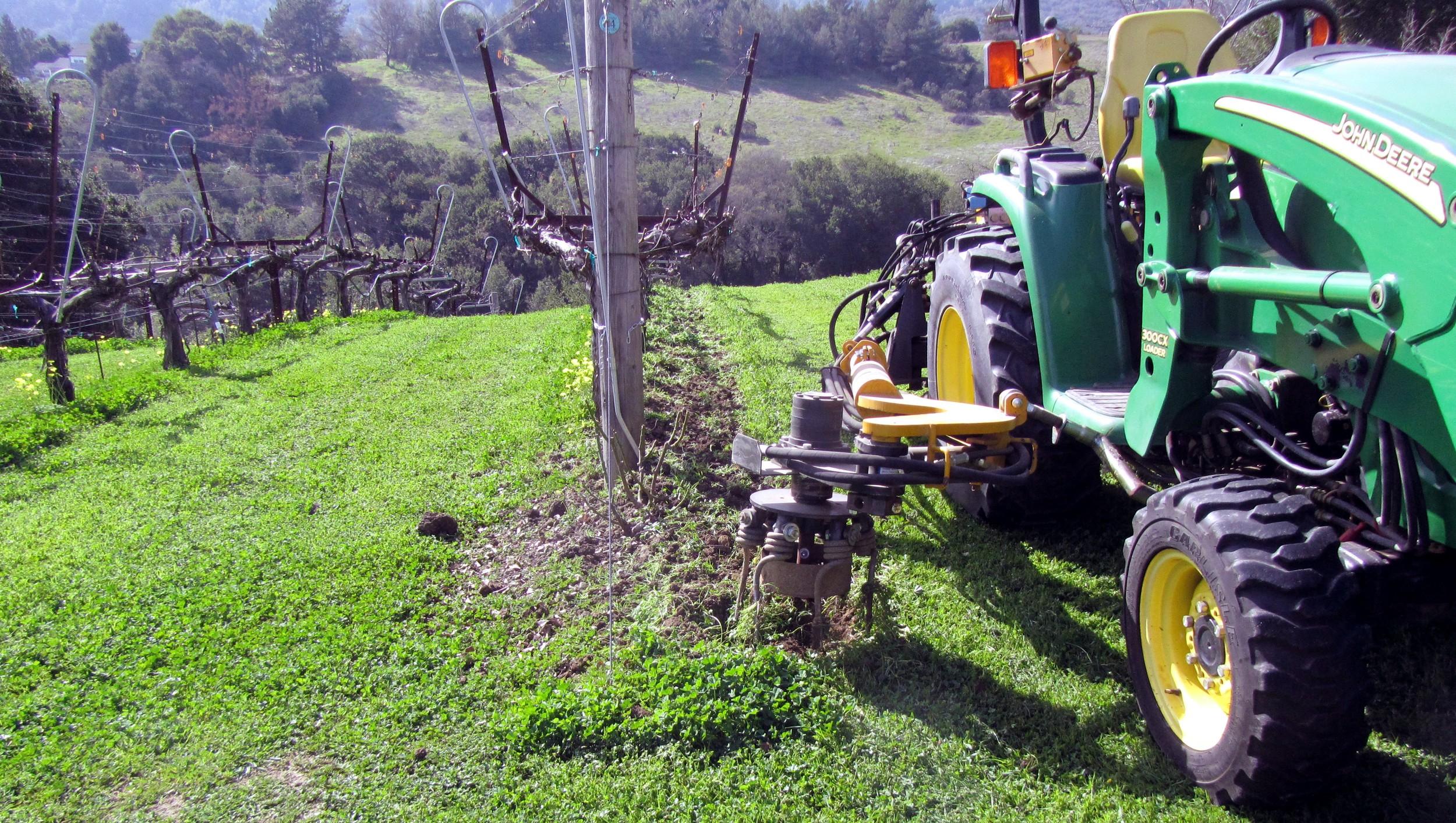 Under vine tilling with weedbager.JPG