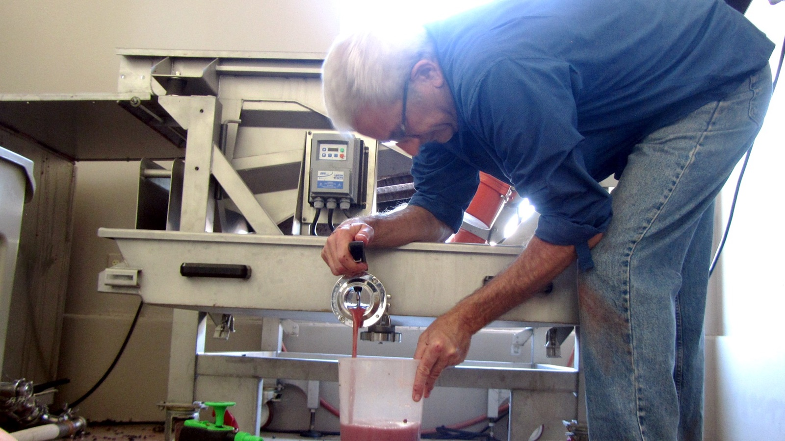 1 Steve Rossi saigneeing from vibration table