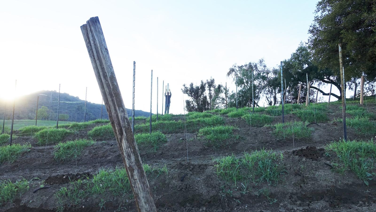9. Hammering in poles