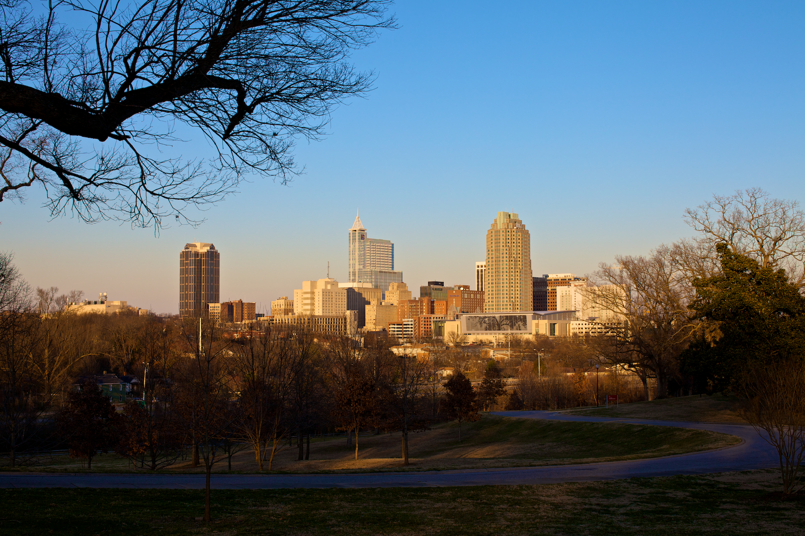 Raleigh Skyline from Dix Campus.jpg