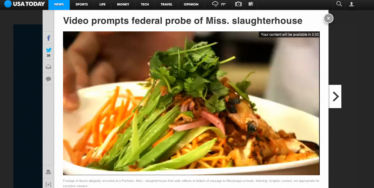 PF Chang Ad Preceding the Slaughterhouse Sins Video