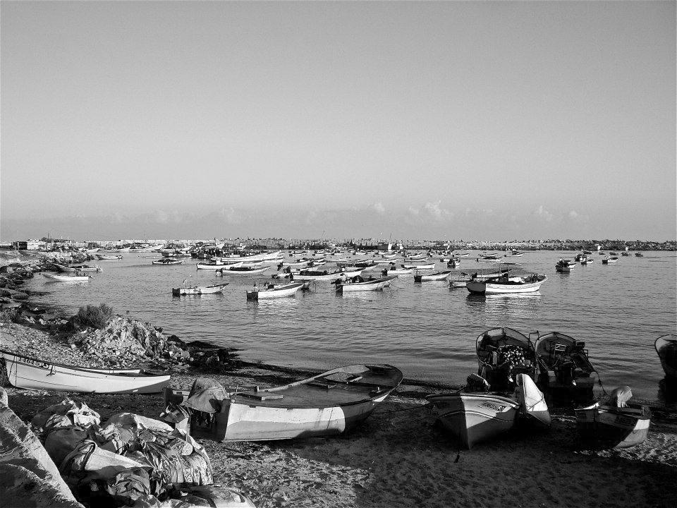 gaza-harbor.png