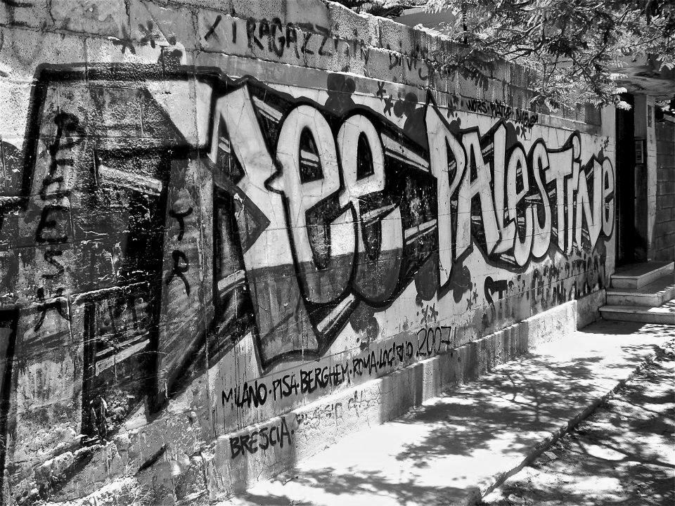 palestine-grafitti.png