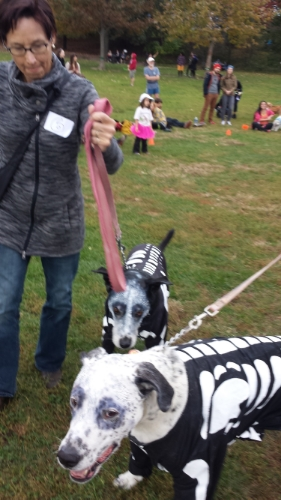 These spooky skeletons (A.J. and Dusty) took third place and won a weekend at country camp from  Eva's Play Pups.