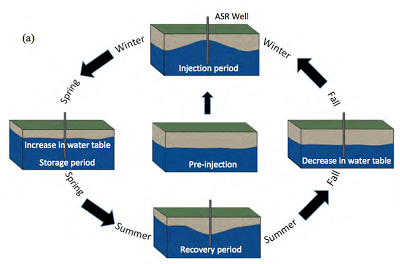 Figure 1. ASR System Cycle Source: www.groundwatergeek.com