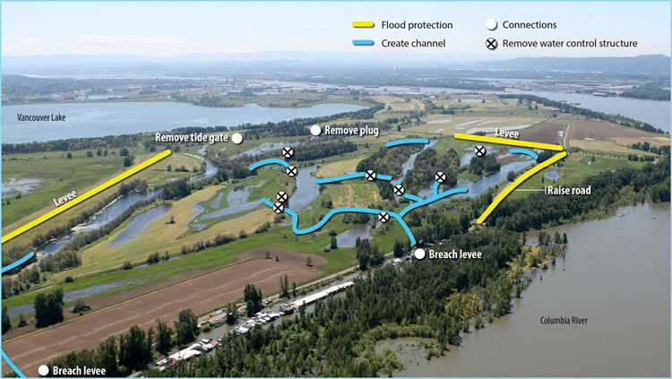 South Unit Shillapoo and Buckmire Slough Restoration Design, Vancouver, WA    Map from the Washington State Department of Fish and Wildlife's project website