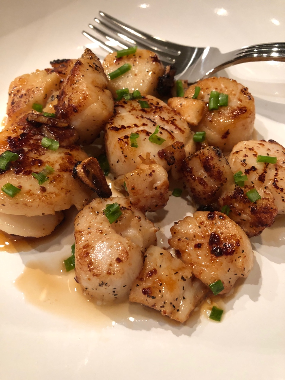 seared scallops.jpeg