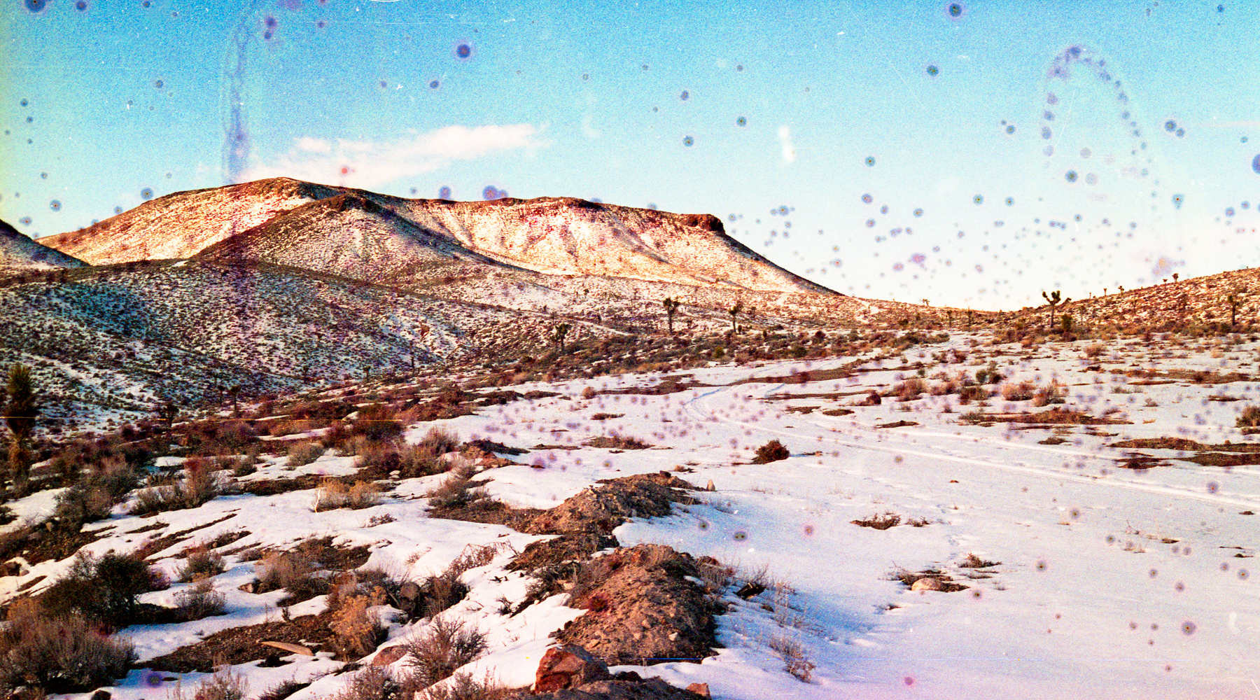 Landscape just outside of Goldfield, NV, film soaked in snow