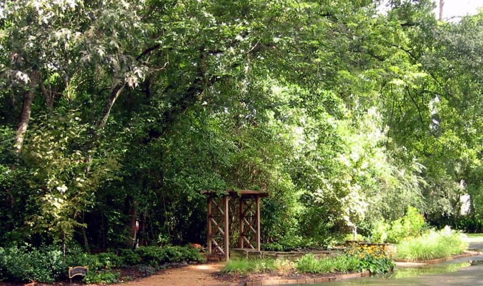 p 3 sam's garden (1).JPG