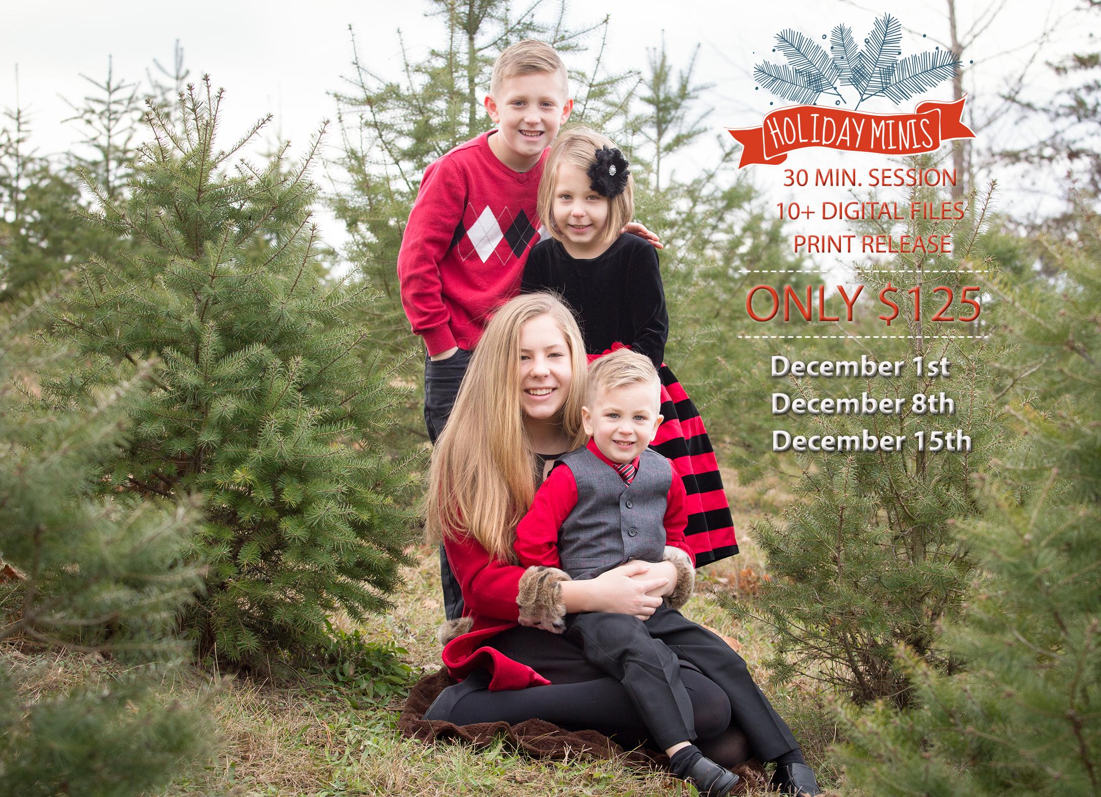 Christmas Tree Farm flyer.jpg