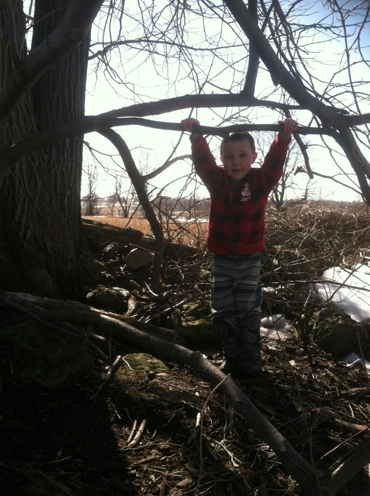 Freddy got to climb his tree unencumbered by snow pants.