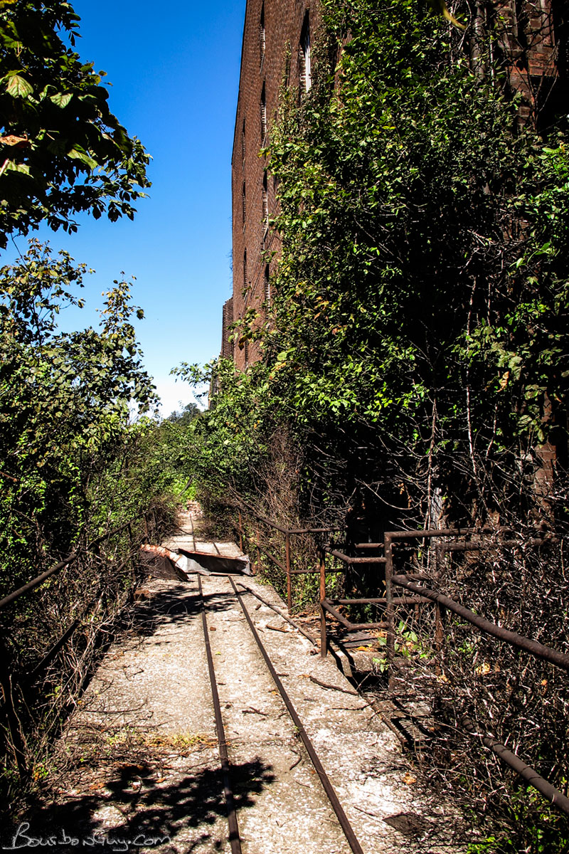 Overgrown Barrel Track