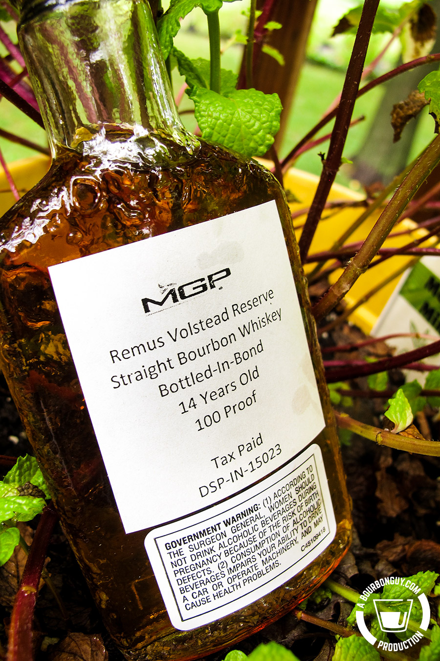 IMAGE: a sample bottle of Remus Volstead Reserve sitting in a mint plant.