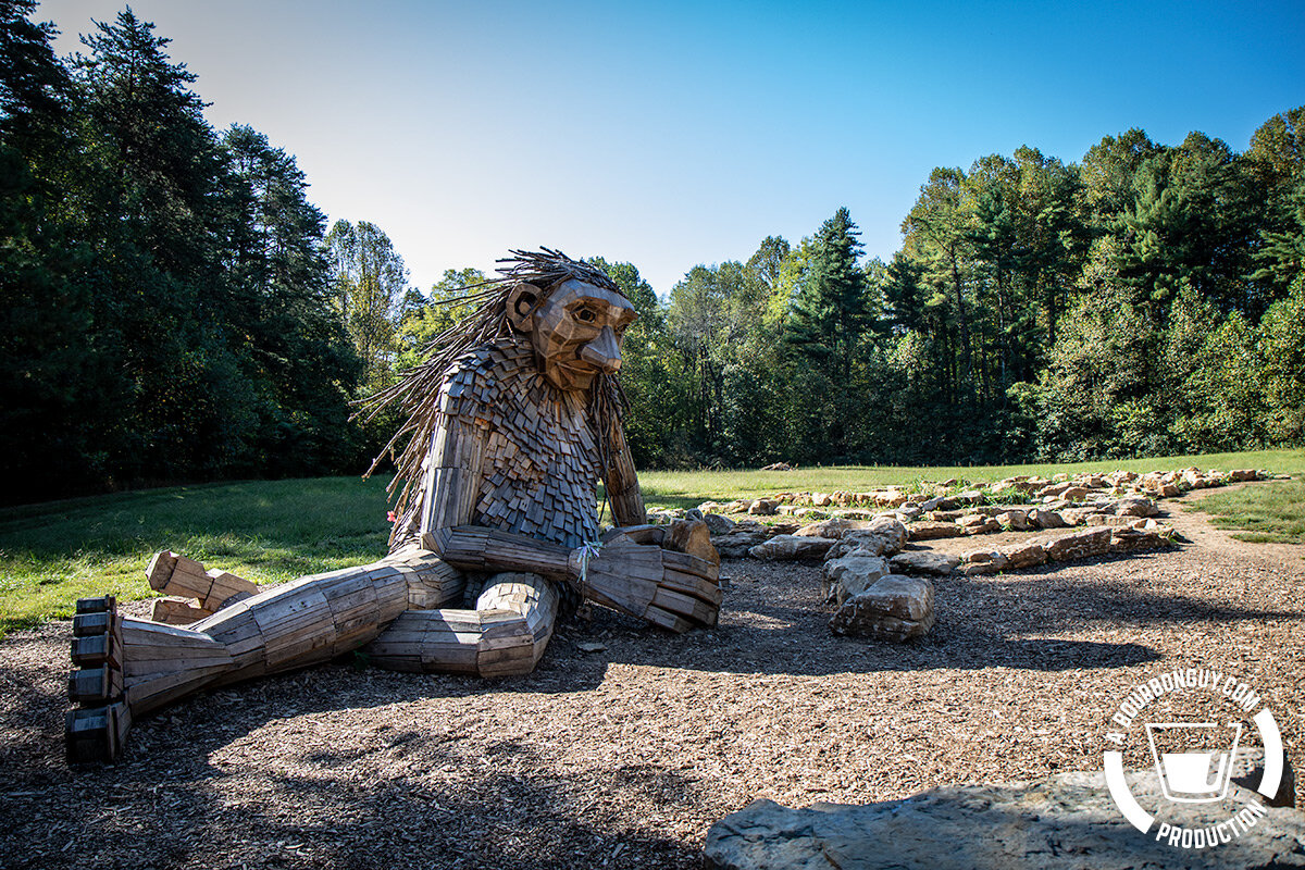 "IMAGE: One of the ""Forest Giants"" of Bernheim Forest"