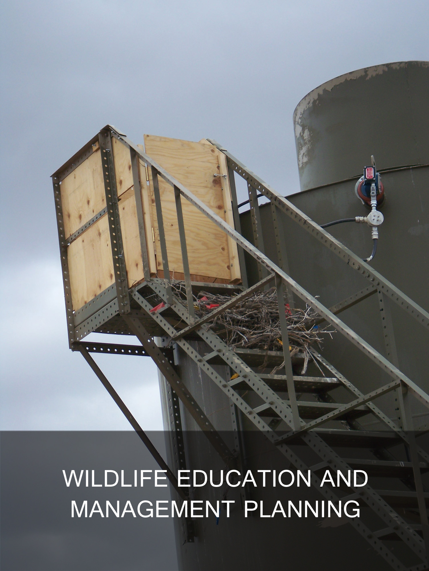 wildlife education and protection planning