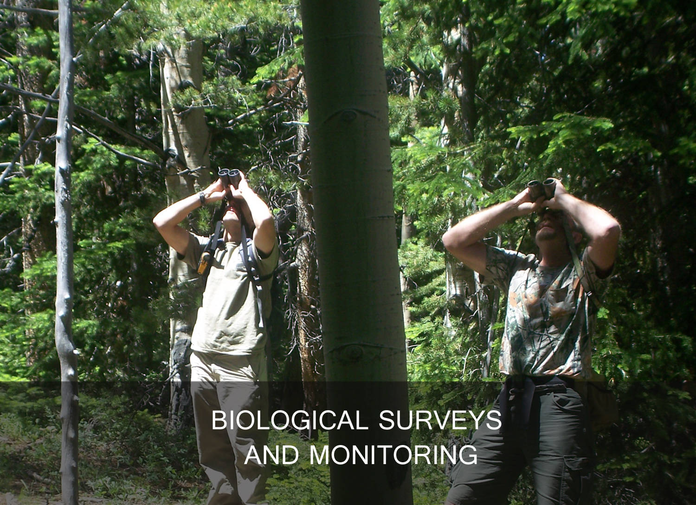 biological surveys and monitoring