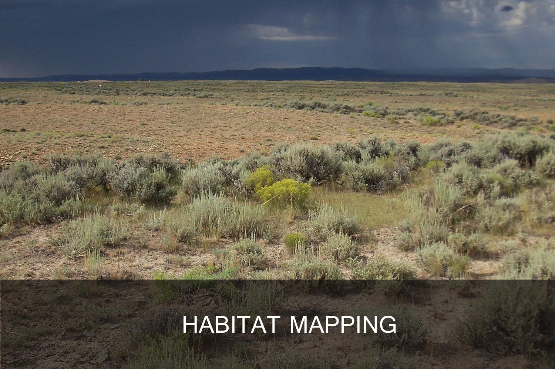Habitat_Banner.jpg