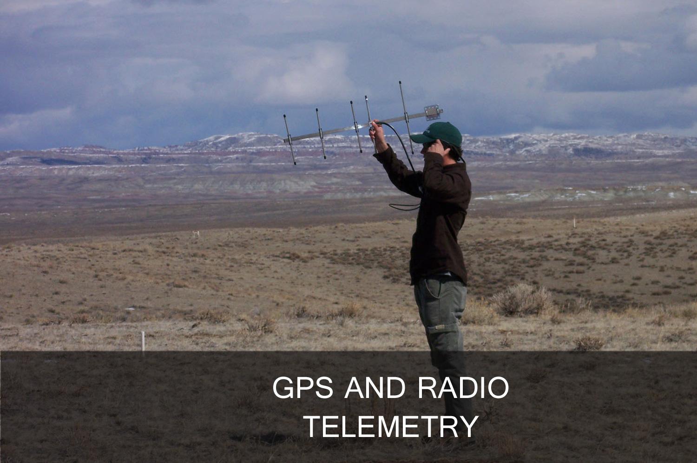 Telemetry_Banner.jpg