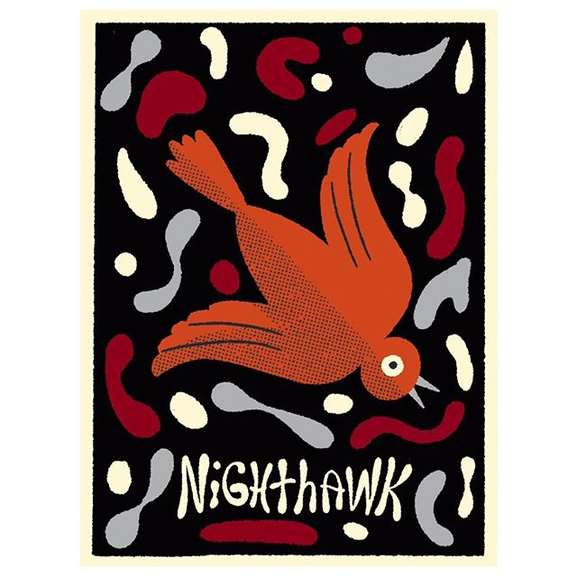 Nighthawk! But not really what they look like... Artistic License!