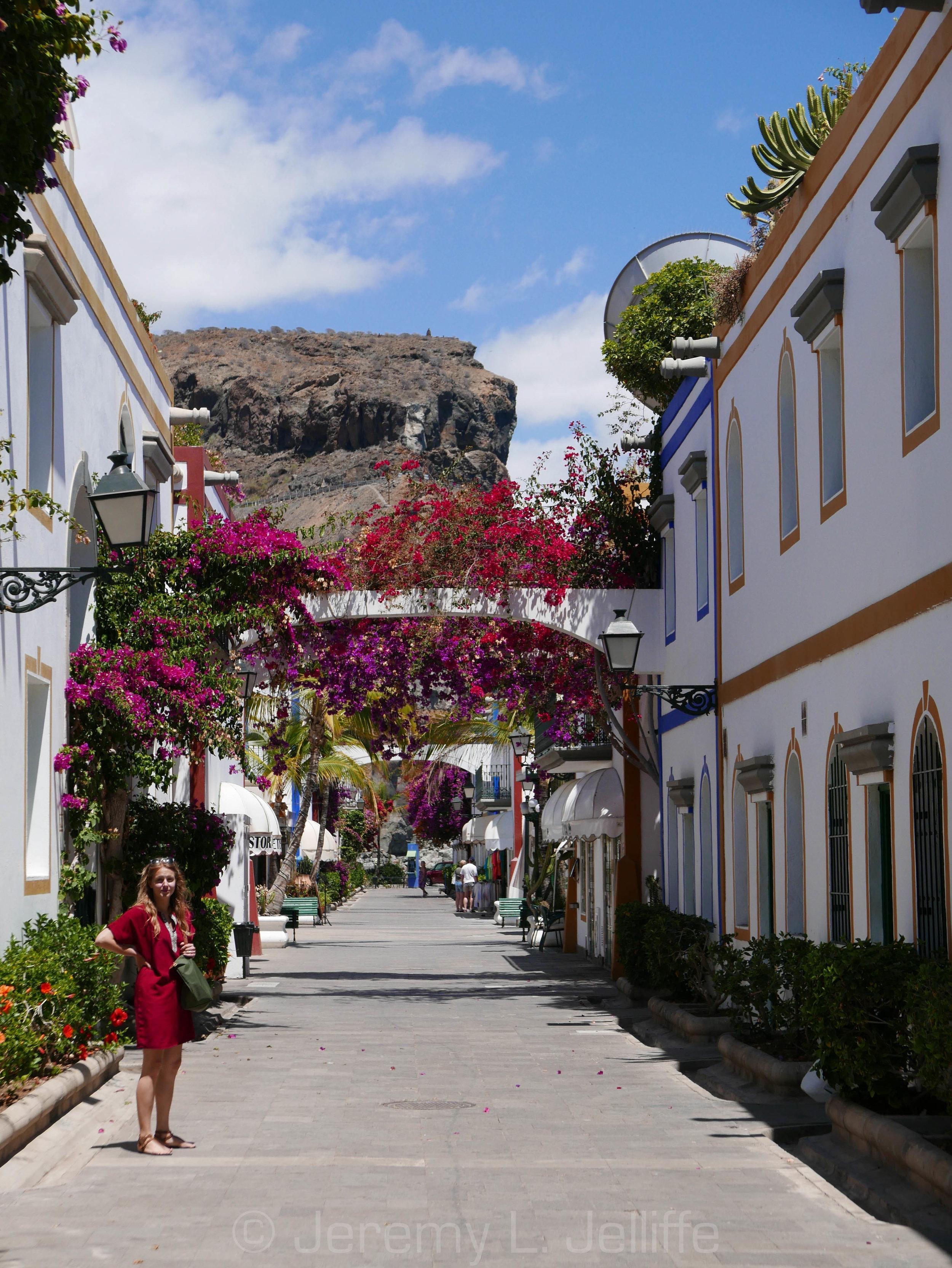 Canaria_1.jpg