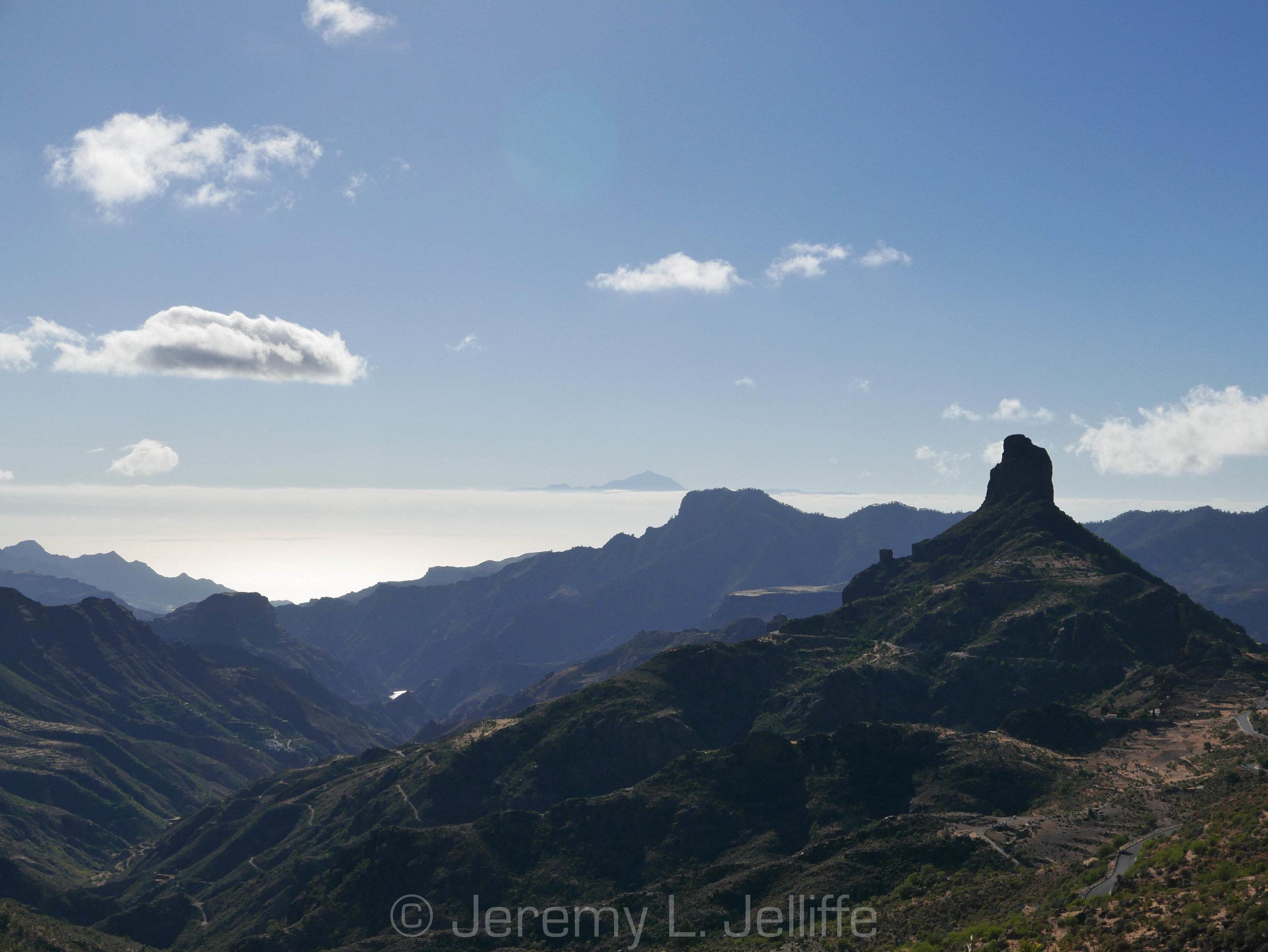 Canaria_8.jpg