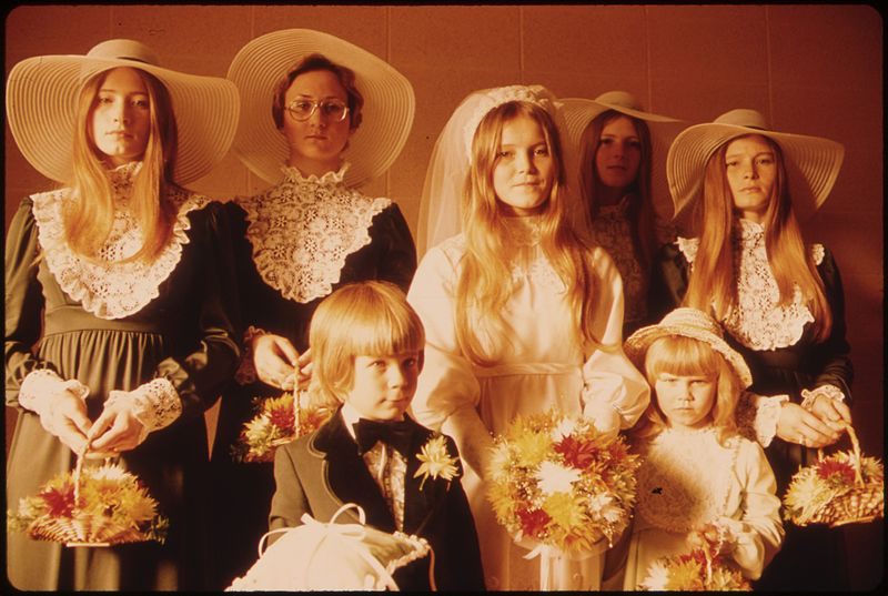 Photograph_of_a_Bride_and_Her_Attendants_in_New_Ulm,_Minnesota_-_NARA_-_558236