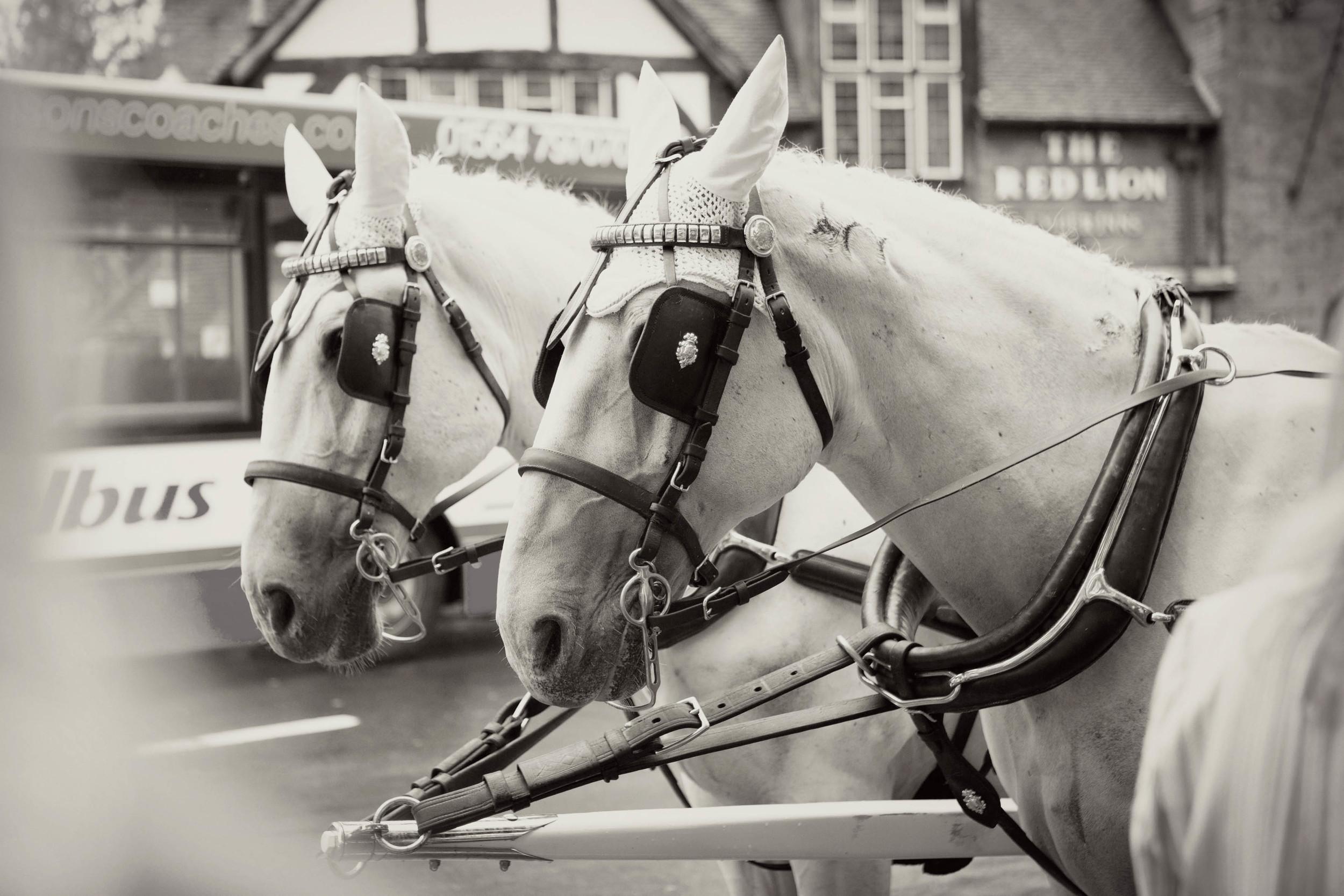 058 Michelle & Si, Hogarths Hotel, Sophie Evans Photography.jpg