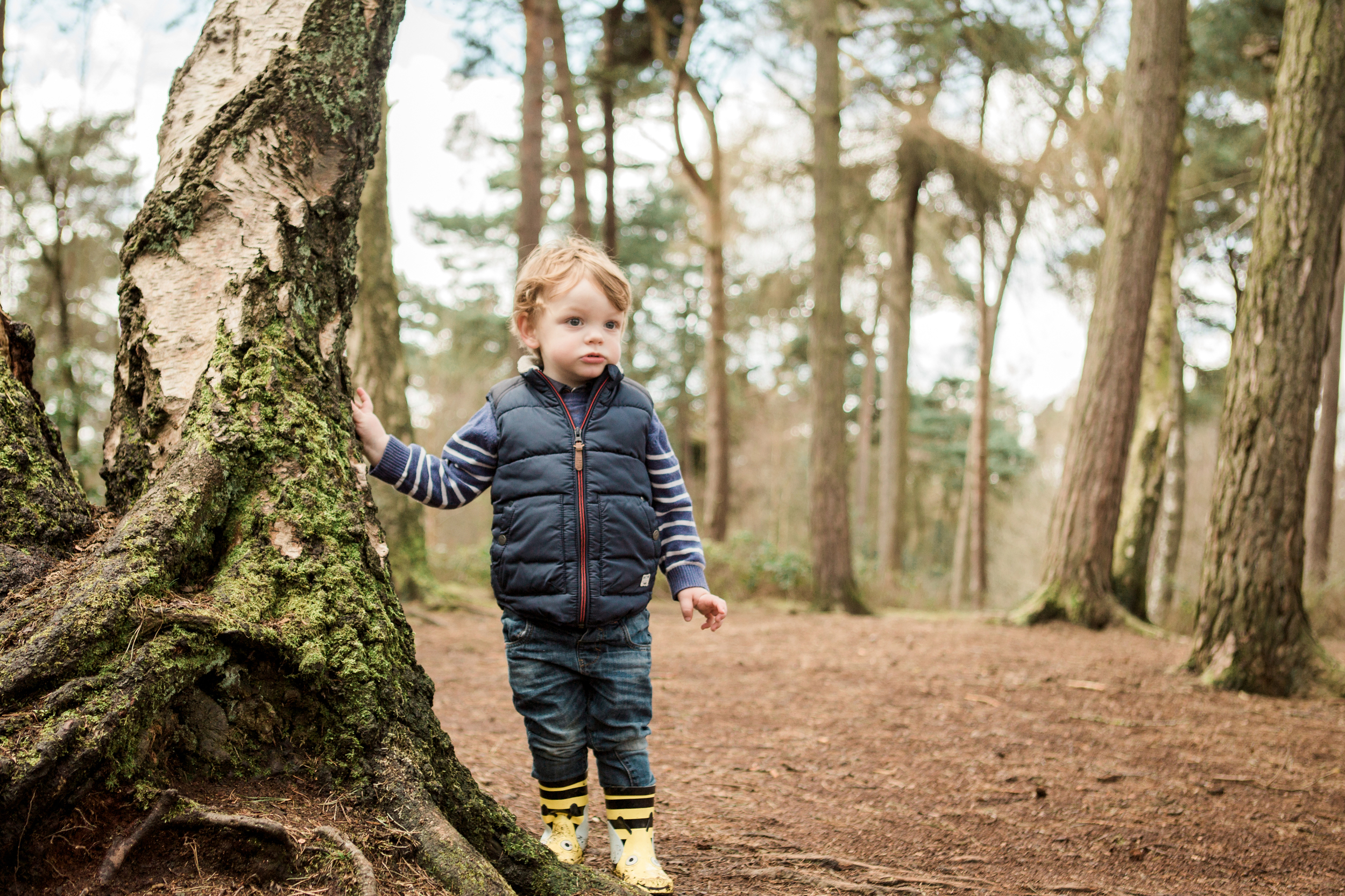 Sophie Evans Photography. Warwickshire Family Photographer, Lifestyle family shoot. Lickey Hills Family Shoot (19).jpg