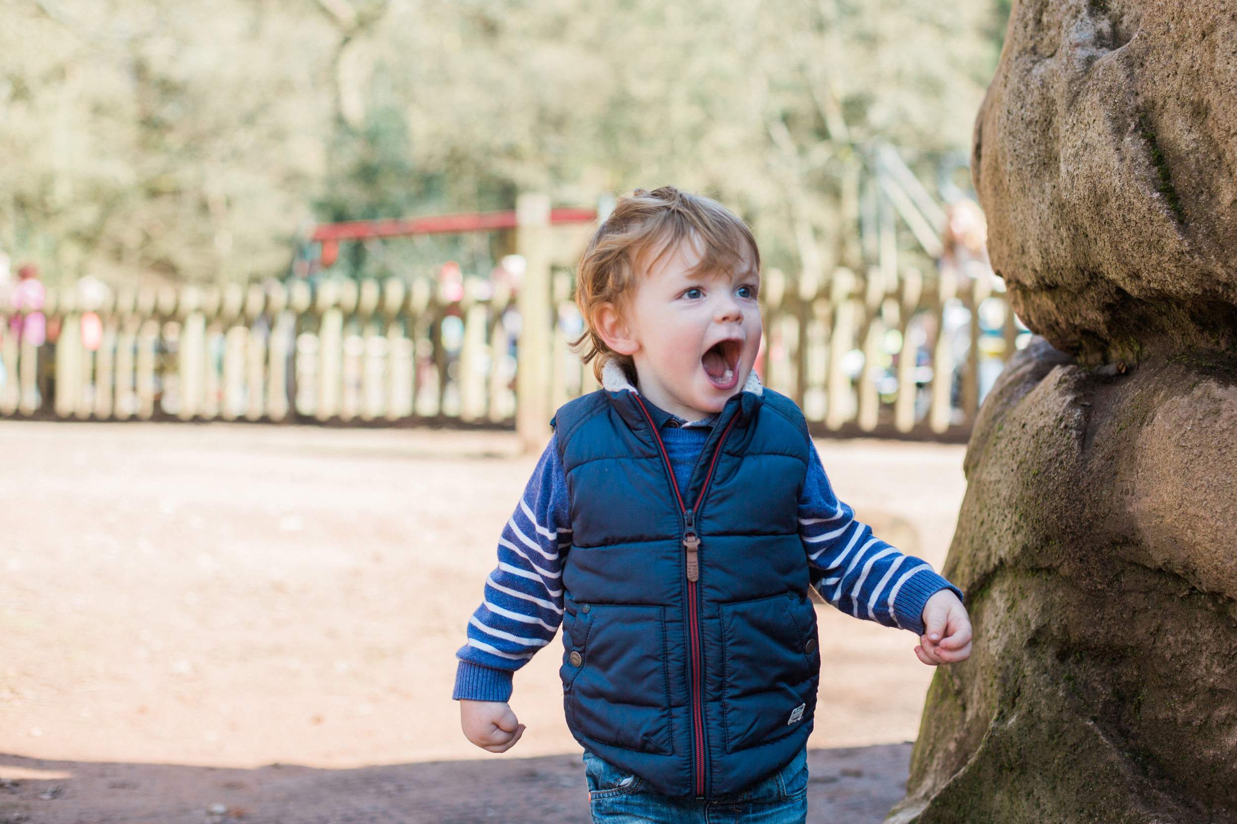 Sophie Evans Photography. Warwickshire Family Photographer, Lifestyle family shoot. Lickey Hills Family Shoot (29).jpg