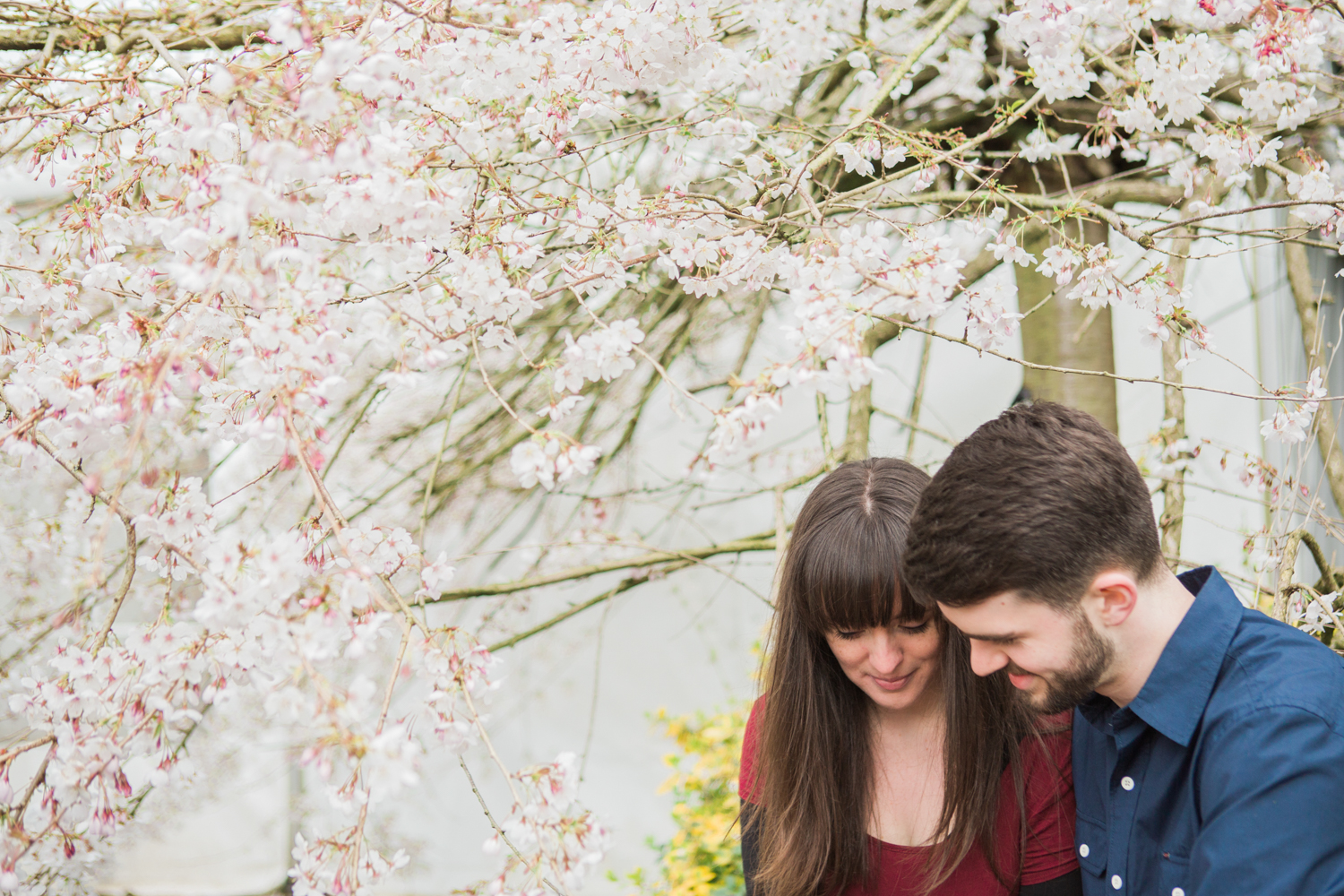Sophie Evans Photography, Alice & Nathanael Botanical Gardens Engagement Shoot. Warwickshire Wedding Photographer (24).jpg