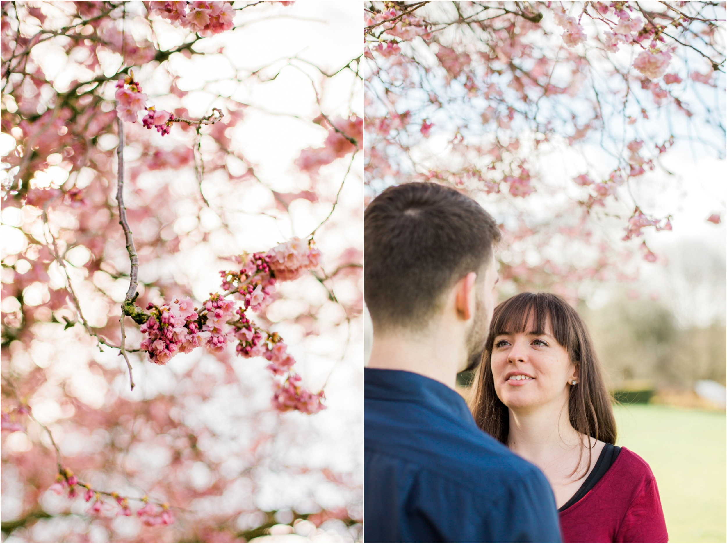 Sophie Evans Photography, Alice & Nathanael Botanical Gardens Engagement Shoot. Warwickshire Wedding Photographer (6).jpg