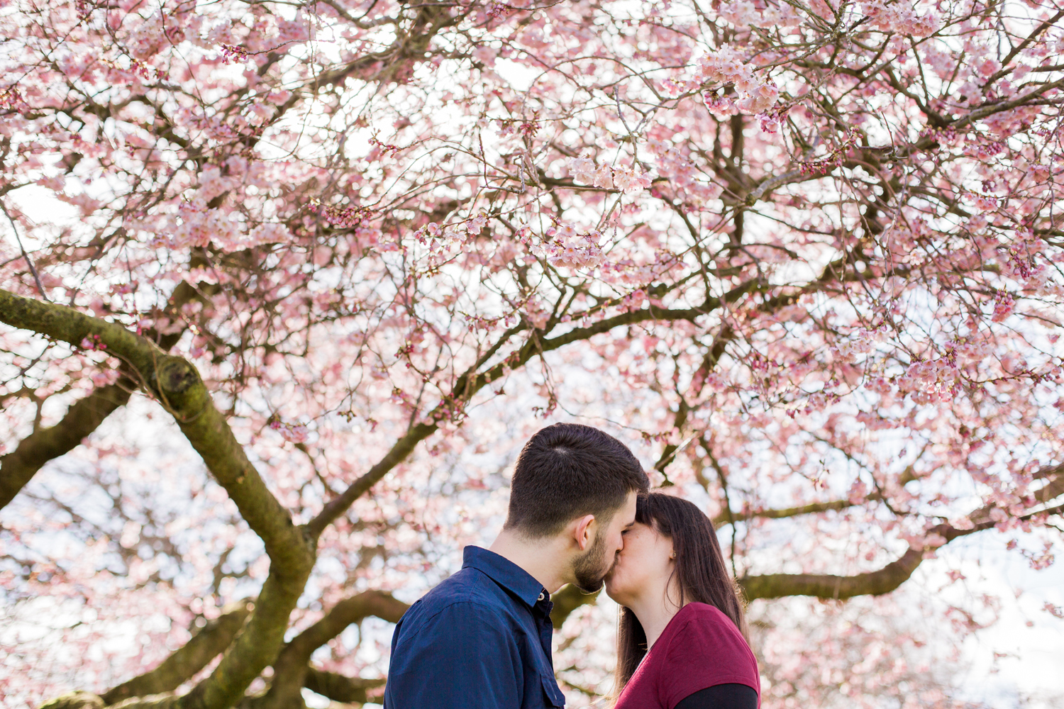Sophie Evans Photography, Alice & Nathanael Botanical Gardens Engagement Shoot. Warwickshire Wedding Photographer (14).jpg