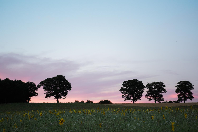 Sophie Evans Photography, Claire & John, Swallows Nest Barn Wedding, Warwickshire Wedding Photographer-188.jpg